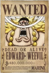 edward weevil bounty