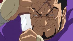 one piece admiral fujitora